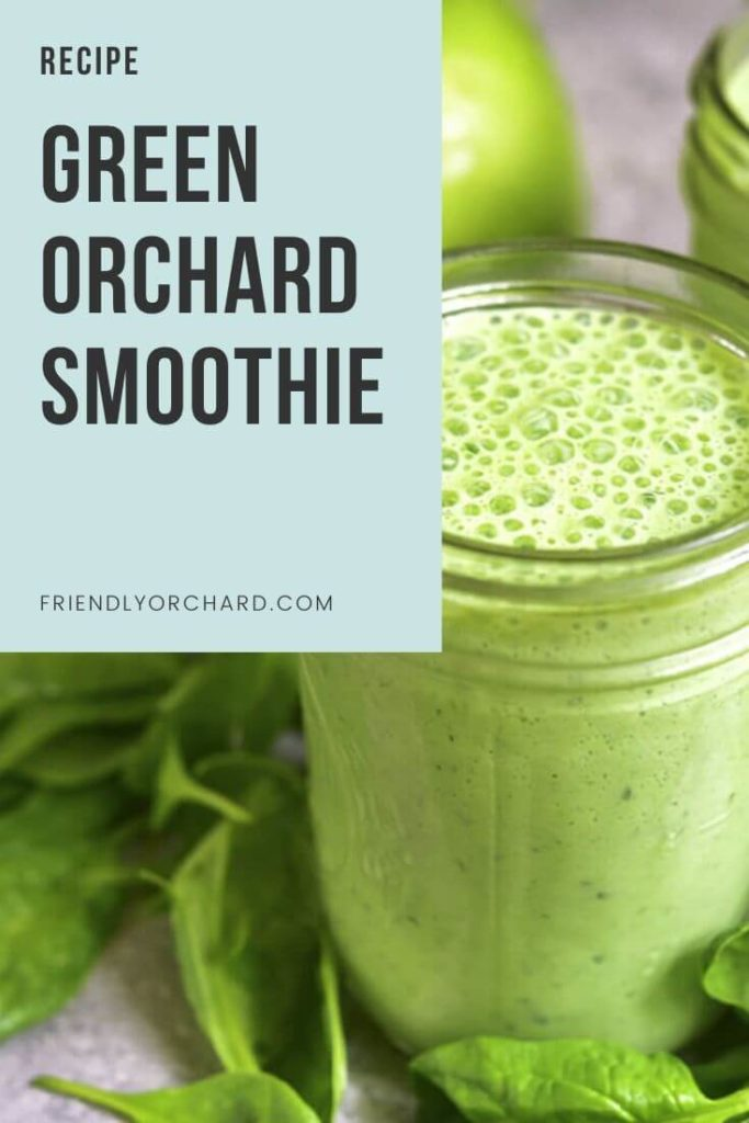 Green Orchard Smoothie   Friendly Orchard